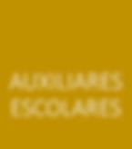 AUXILIARES ESCOLARES.png