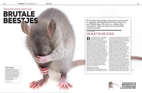 Ratten Uitkrant Winternummer 2019 1.png