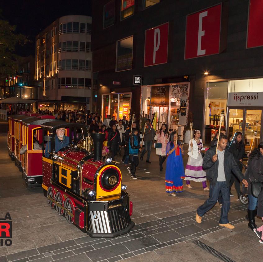 divali festival trein