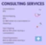 Consulting Services (1).png