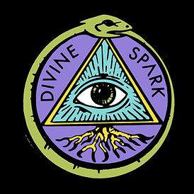 Divine Spark Logo 2.png