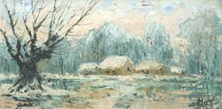 Neige au marais
