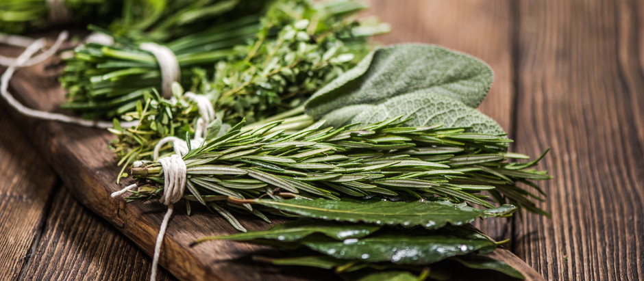 Herbs for Natural Anti Aging