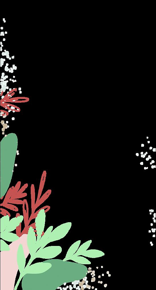 plantitasstories2-02.png