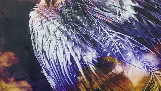 Dead Bird Silk Scarf Essex Cloud print