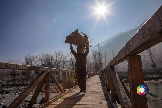 Kashmiri women carrying logs on their he