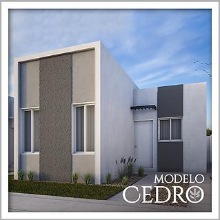Modelo-2-Cedro.png