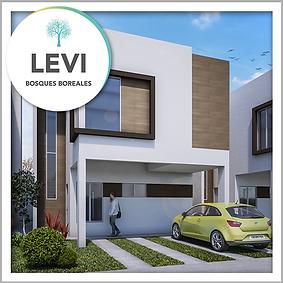 Modelo-4-Levi.png