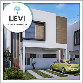 Modelo-6-Levi.png