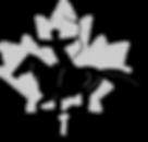 CFMA Logo redone.png