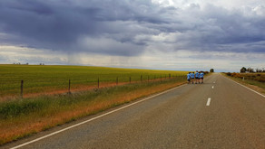 Footing a Thousand Kms for our Farmers