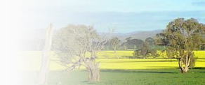 Council Catch Up: Greater Hume, NSW