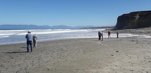Strand im Tiefen Süden
