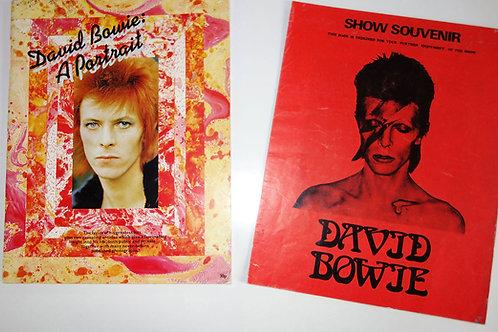 David Bowie Show Programme