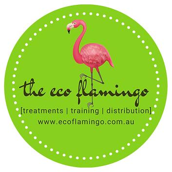 Eco Flamingo on Green.png