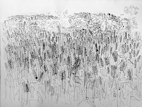 Raoul Dufy champs de blé pochoir en couleurs, édition Jeanne Bucher