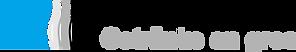 TheoRietschiAG_Logo.png