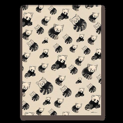 Panda roux l'invasion