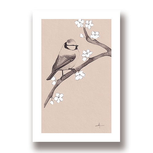 Sakura à mésanges - Tirage d'Art