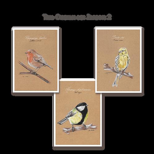 Trio Oiseaux des Jardins 2