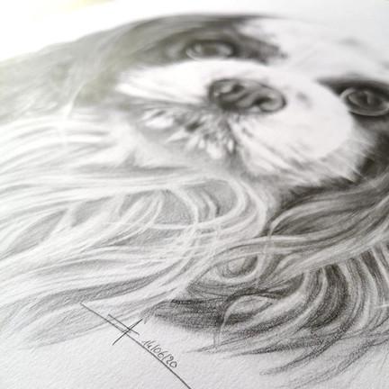 signature_dessin_realiste.jpg