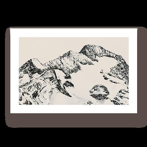 Muzelle - Tirage d'Art