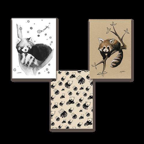 Trio de panda roux