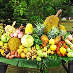 Malaysian Fruit
