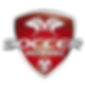 Soccer-Rennais-red sans fond-01.png