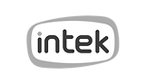 logo-intek-2_edited.png