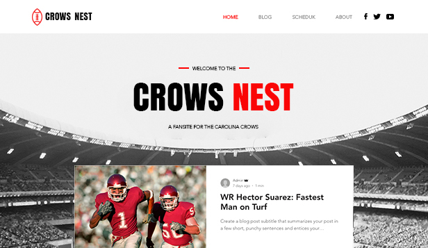 Sport en recreatie website templates – American Football Fan Site