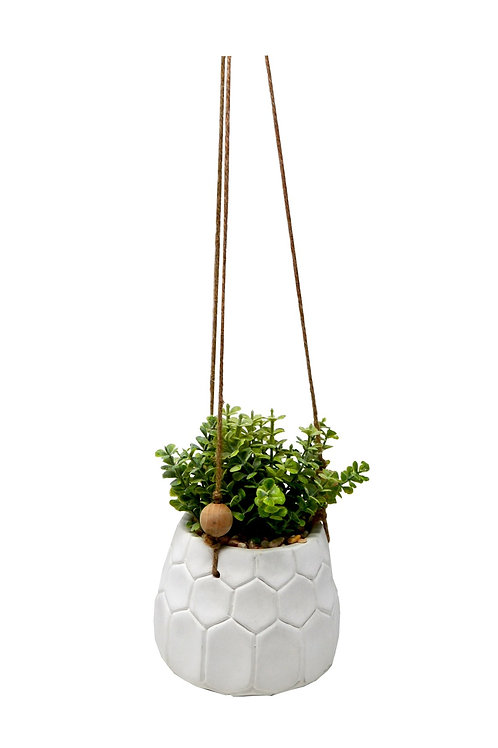 Hanging White Pot with Plant