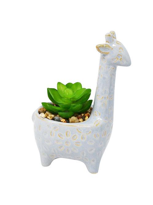 Giraffe Pot with Succulent