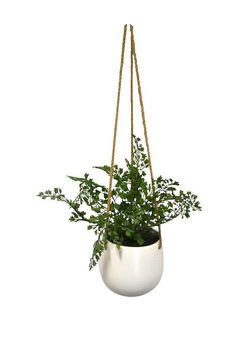 Faux Alba Hanging Pot