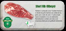 short-rib-s.png