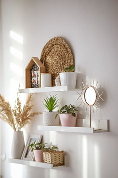 Plants on shelf.jpg