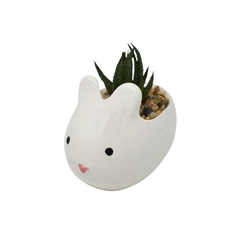 Bunny Pot with Aloe Plant