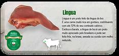 lingua-s.png
