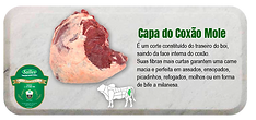 capa-do-coxão-mole-s.png
