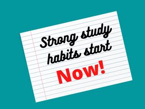 Study Habits Your Child Should Start Building Now
