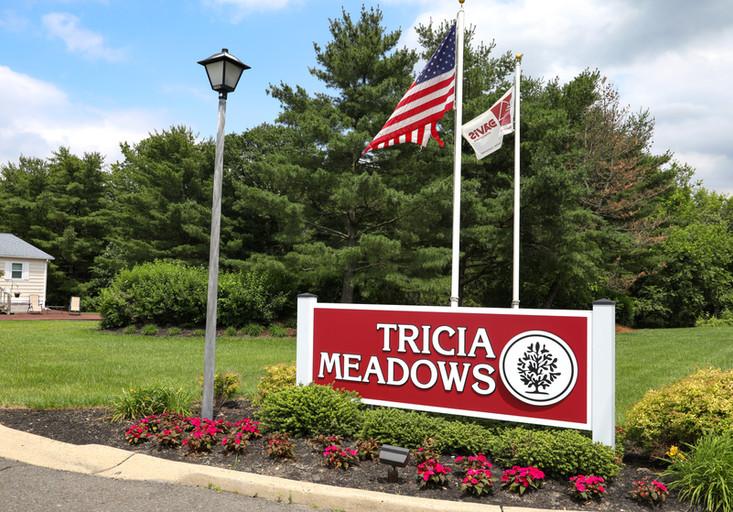 Tricia Meadows Sign (edited)-1.jpg