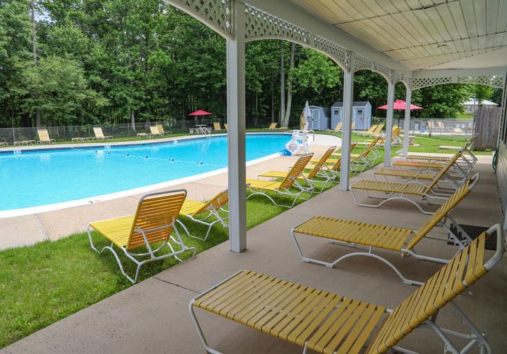 Tricia Meadows Pool (edited)-4.jpg