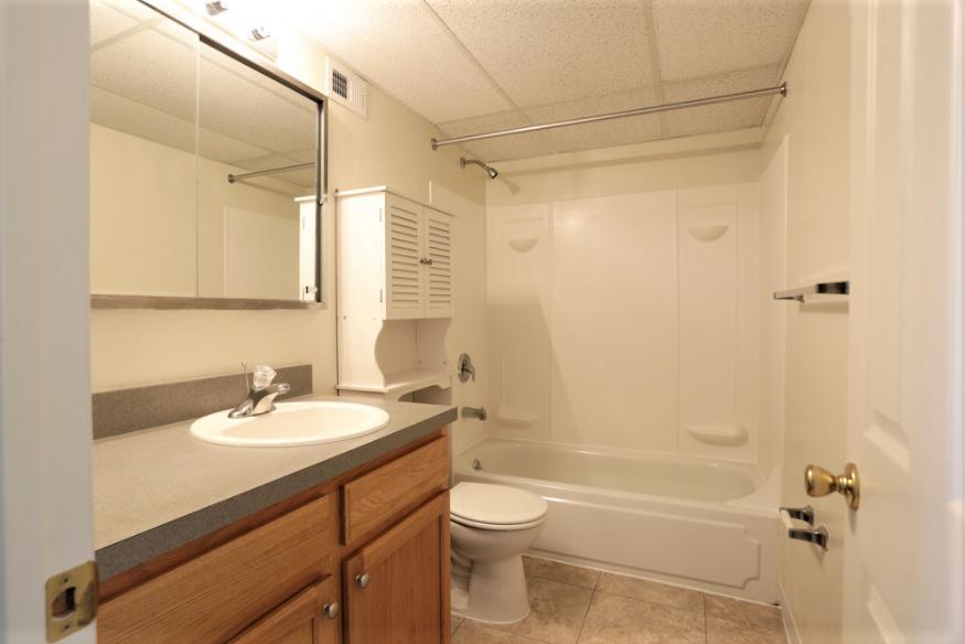 Allison Bathroom.png