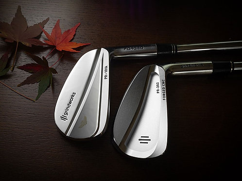 MB101A/PR202 Combo Forged Irons