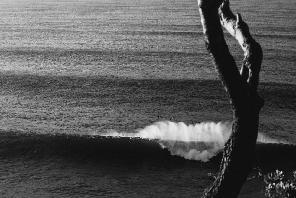 SurfWW-47.jpg