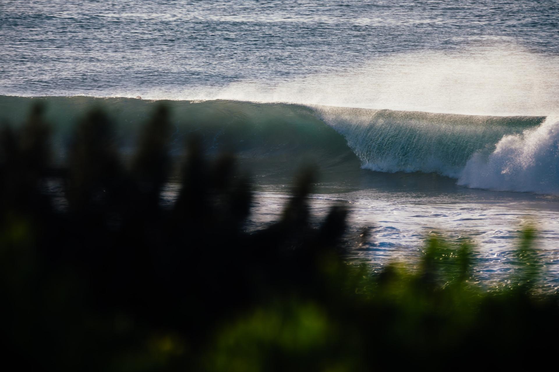 SurfWW-22.jpg