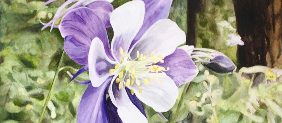 Sylvan Blooms