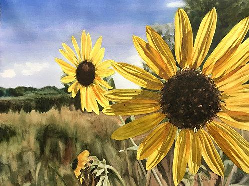 """""""Summer"""" Framed Original Watercolor"""