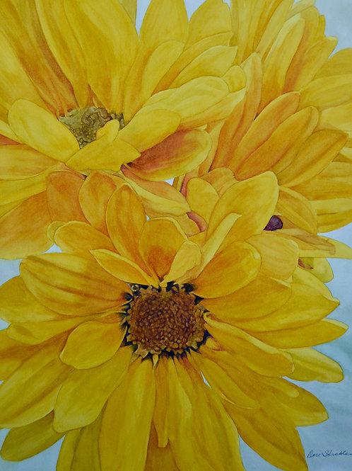 """""""Yellow"""" Framed Original Watercolor"""