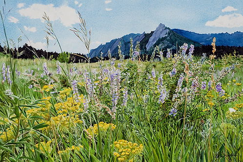 """Verdant Chautauqua"" Framed Original Watercolor"